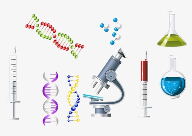 Как сделать тест ДНК на отцовство